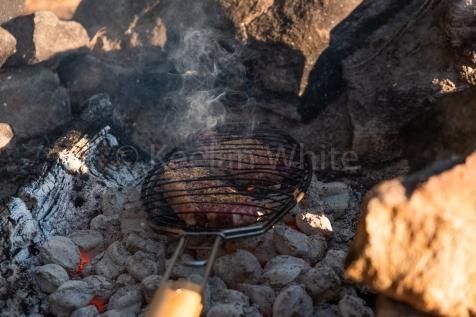 Algonquin Tea Lake_20180701-12