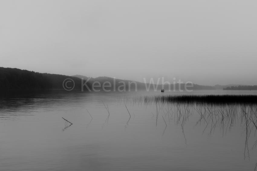 Algonquin Tea Lake_20180701-31