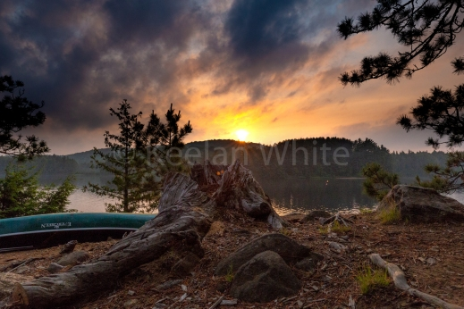 Algonquin Tea Lake_20180701-38