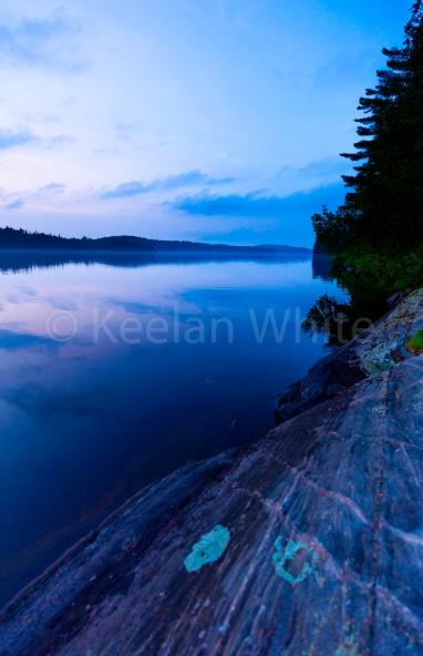 Algonquin Tea Lake_20180701-40